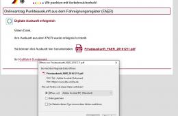 KBA02 260x170 - Punkteabfrage in Flensburg ONLINE